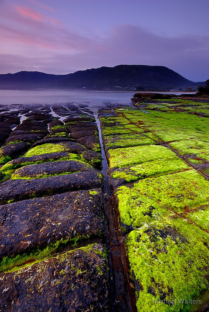 Good to be green by Michael Walters