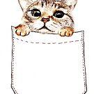 Taschenkatze von AnnaShell