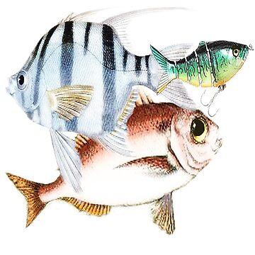Funny Fish by ginnyl52