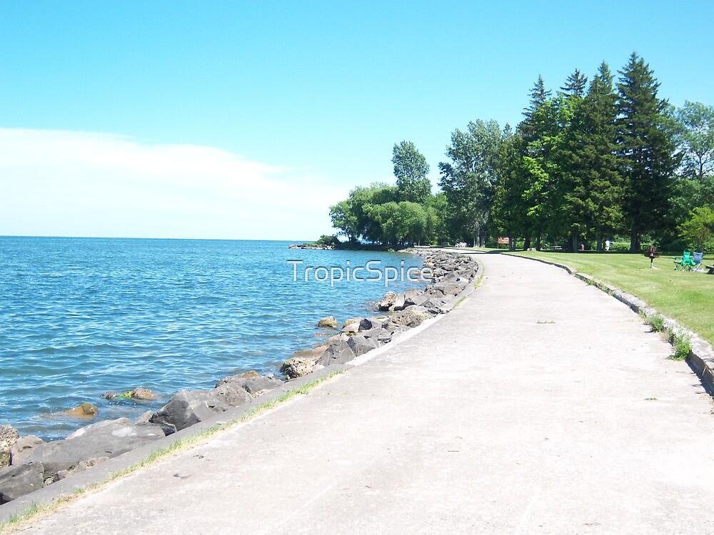 Hamlin Beach Walkway by TropicSpice