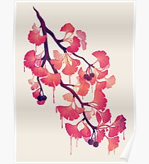 O Ginkgo Poster