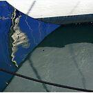 Blue Reflection  by Marguerite Foxon