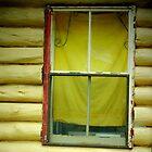 Old cabin window, Bunya Mountains, Qld Australia by sandysartstudio