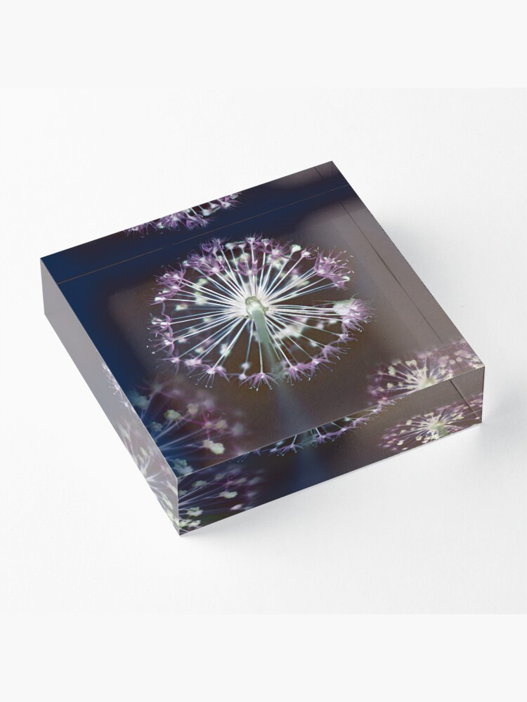 Alternate view of Floral Fireworks. Dark Floral Acrylic Block