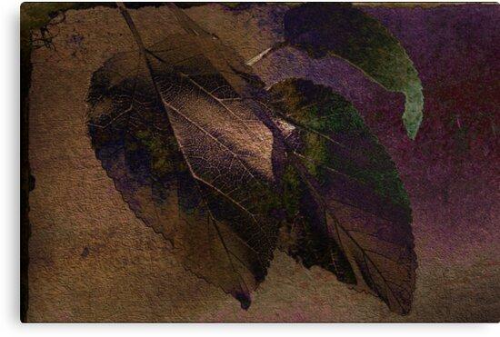 Peak of Autumn by Kathy Nairn