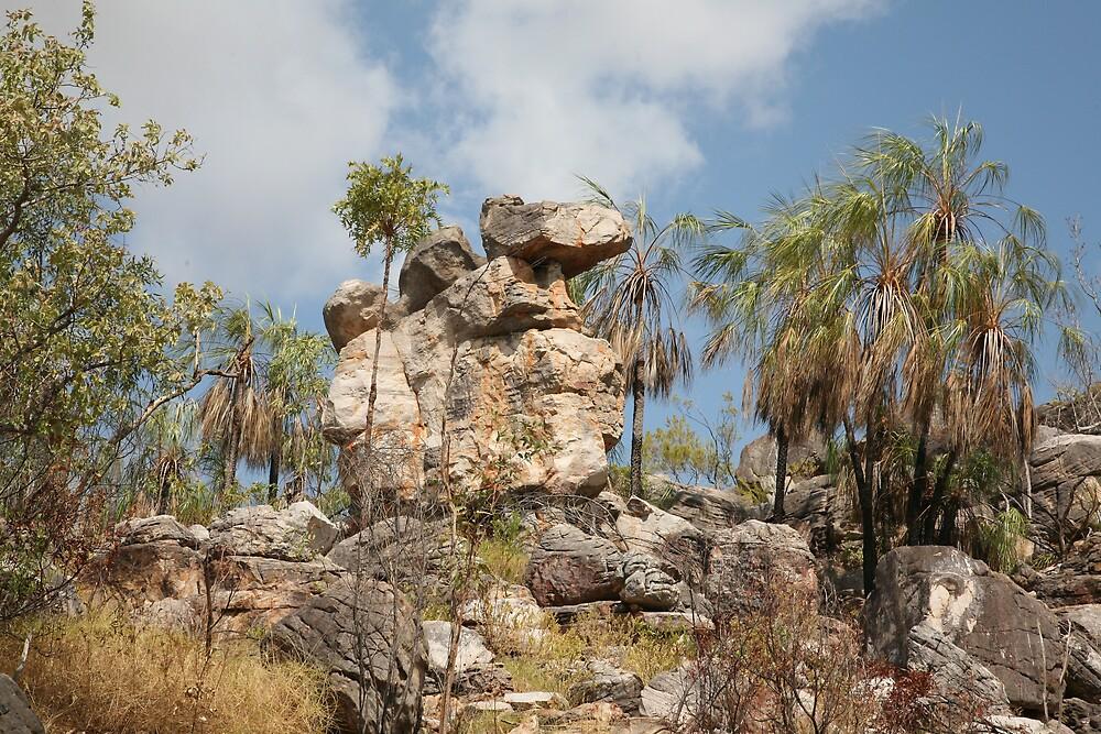 Kimberley Rock Structures by jamesmason