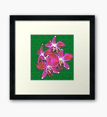 Artistic Orchid Framed Print