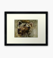 Thick fur Framed Print