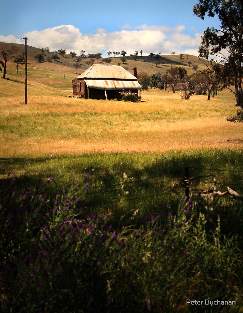 Color Farm House by Peter Buchanan