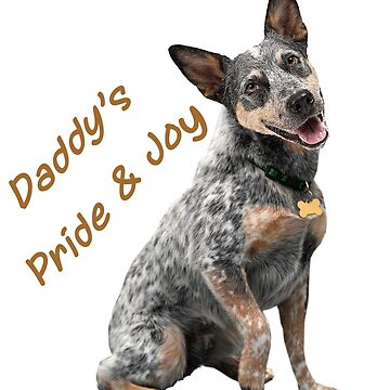 Australian Cattle Dog Daddys Pride And Joy by Friskybizpets