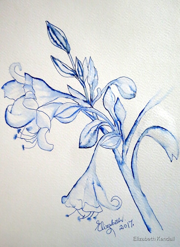 Belladonna Lily by Elizabeth Kendall