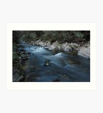 Yarra Ranges Stream Art Print