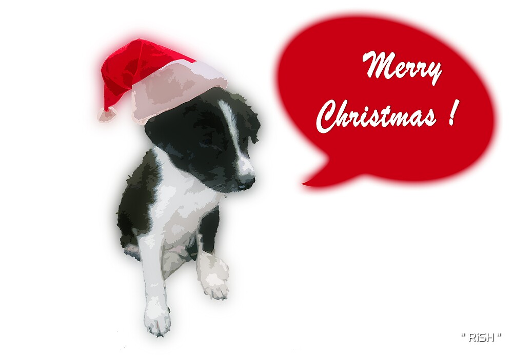"Christmas Card 2 by "" RiSH """