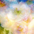 Rose Wolken von Teresa Pople