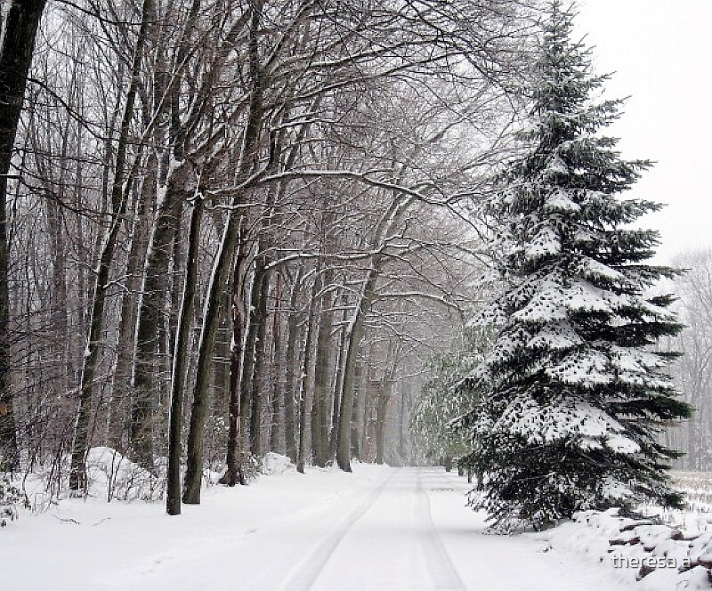 A SNOWY LANE UNFRAMED by theresa a