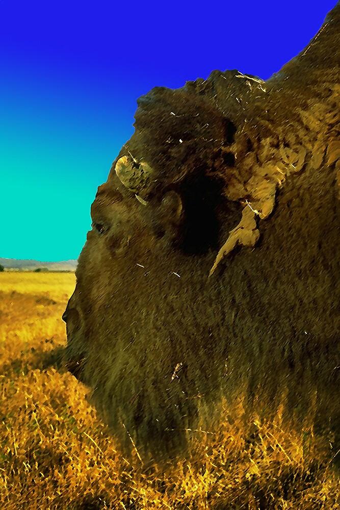 Bison by Dennis Begnoche Jr.