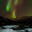 Auroral Night in East Iceland by Parasin