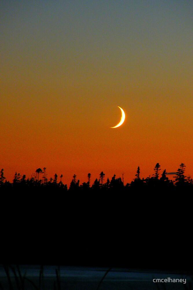 fingernail moon by cmcelhaney