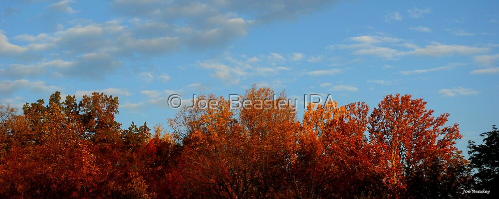 Autumn Glory by © Joe  Beasley IPA