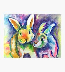 Rabbit Pals Photographic Print