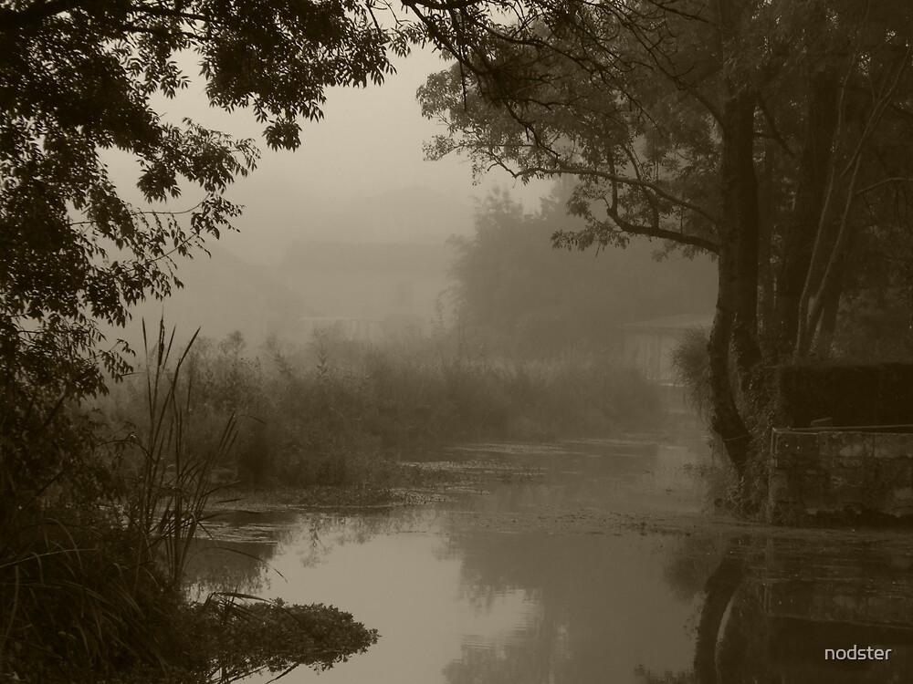 Misty River by nodster