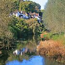 Stour Valley Way: River Stour, Spetisbury by RedHillDigital