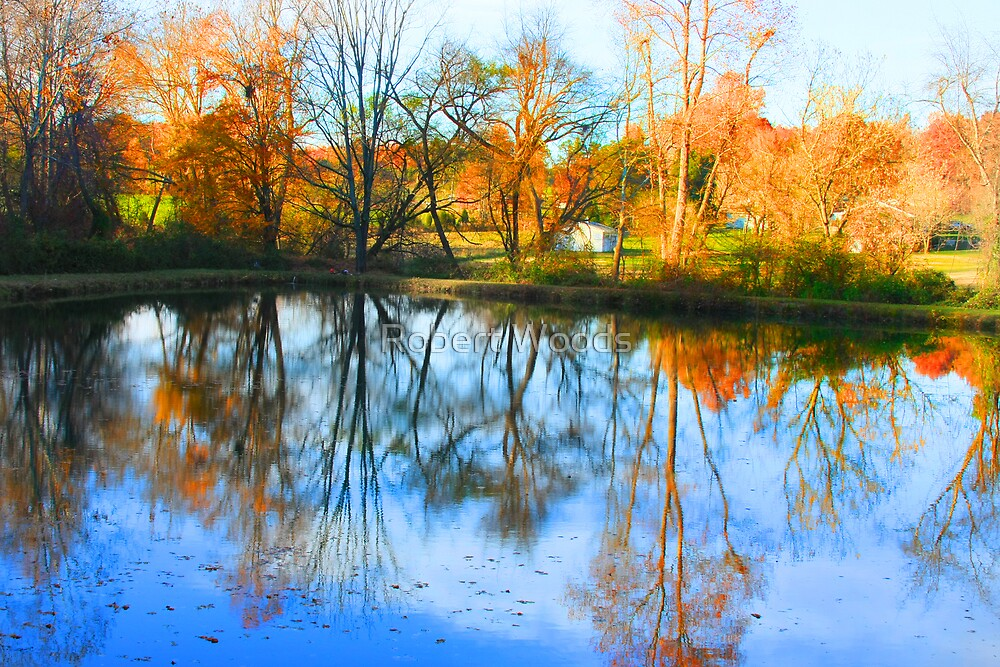 Reflective Pond by Robert Woods