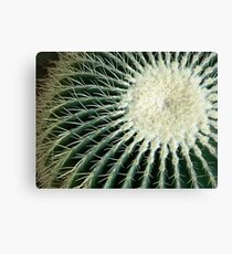 Cactus:  Get the Point Canvas Print