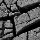 The Cracks by Spyte