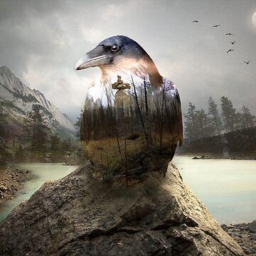 Raven's spirit by hayleyrphoto