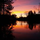 Sunset on the Manistee River by Megan Noble