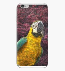 Macaw's delight iPhone Case