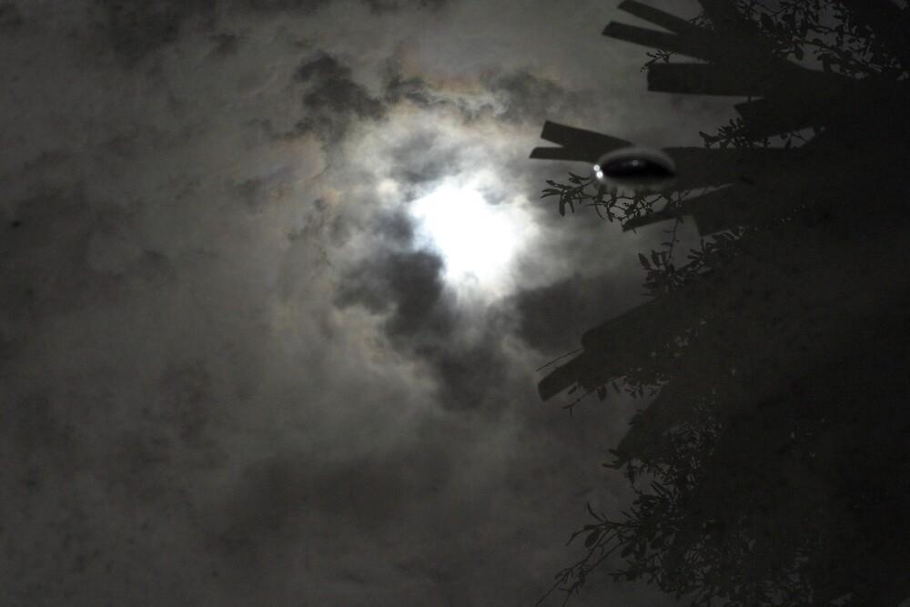 reflection by LWitt