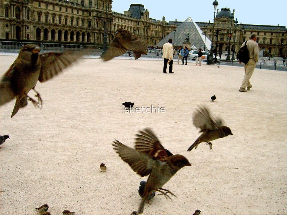 Birds of Paris by sketchie