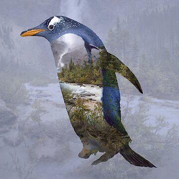 Penguin ponders by hayleyrphoto