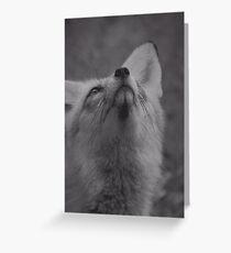 The fantastic mr fox Greeting Card