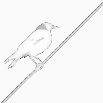Bird on Wire by Kitsmumma