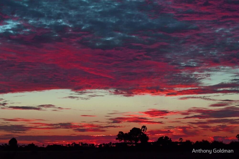 Colorful Botswana sunset! by Anthony Goldman
