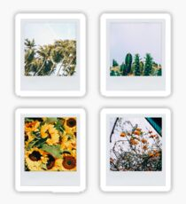 4 polaroid pictures Sticker