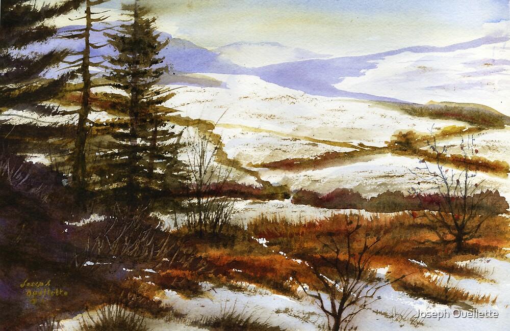 I came upon a Vista by Joseph Ouellette