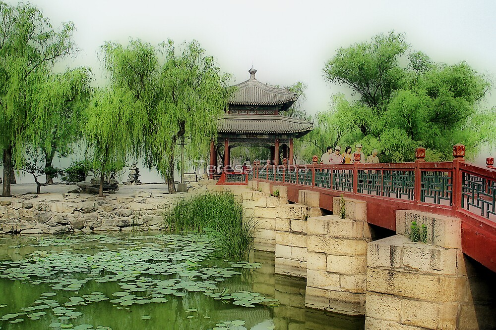 A Touch of China by Teresa Zieba