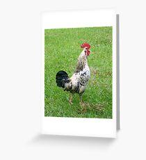 Cock-A-Doodle-Doo Greeting Card