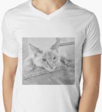 Relaxing Perch Men's V-Neck T-Shirt