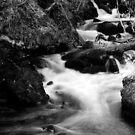 Tumbling Water by Sarah Cowan