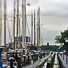 rotterdam by Michael Mancini