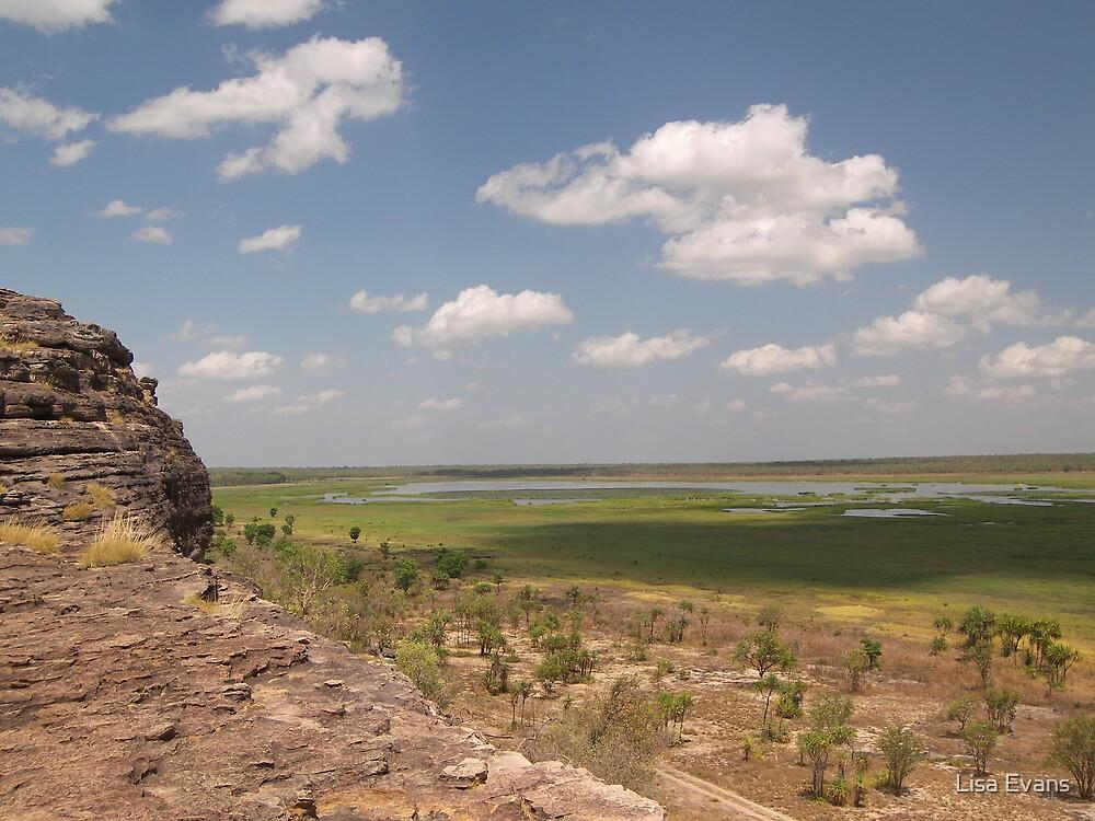 Kakadu Flood Plains,Kakadu National Park, by Lisa Evans