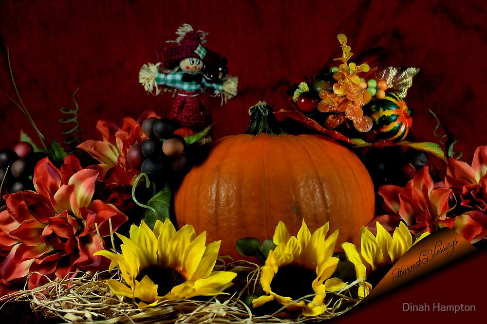 Harvest Blessings#2 by Dinah Hampton