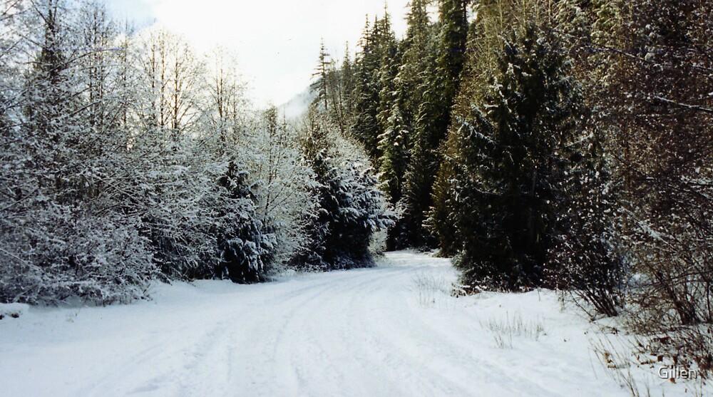 Snowy Forest by Gillen