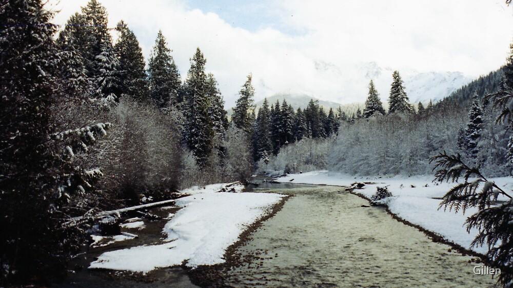 Snowy River side by Gillen
