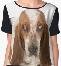 Sad looking Basset Hound dog Women's Chiffon Top